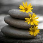 zen meditate_3
